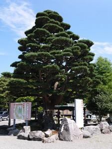 ishikawa10