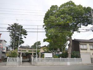藤棚白山神社