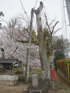 金山彦神社