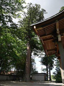 級長戸辺神社