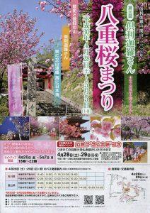 倶利伽羅さん八重桜まつり