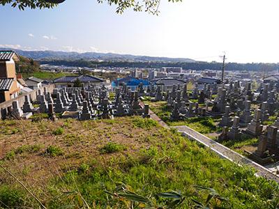 若松本泉寺